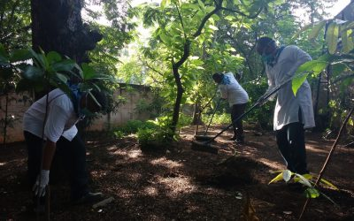 Mogappair samithi of Chennai West district does Seva