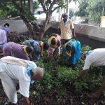 Ghantasala samithi of Krishna district (Andhra Pradesh) does Seva