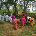 Manugur samithi of Bhadradri (Kothagudem) district (Telangana) does Seva