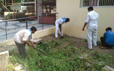 Ajwa samithi of Vadodara district (Gujarat) does Seva