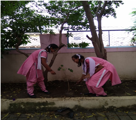 SSS School samithi of Surat district (Gujarat) does Seva