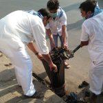 RAJARHAT samithi of NORTH 24 PARGANAS district (West Bengal) does Seva